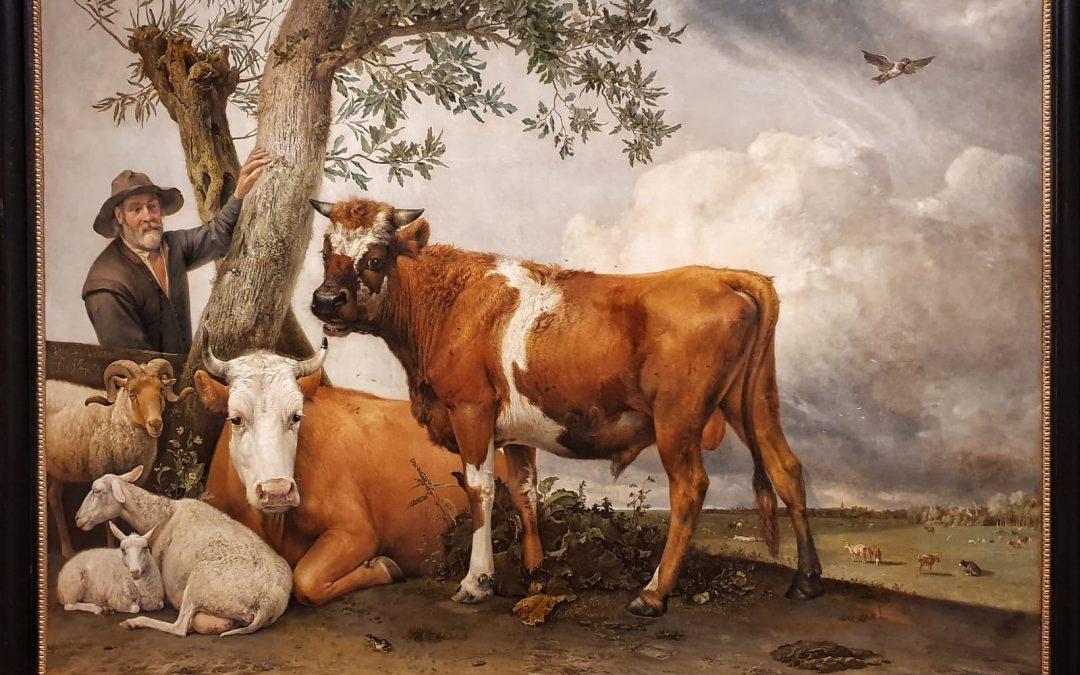 Mauritshuis De Stier van Paulus Potter