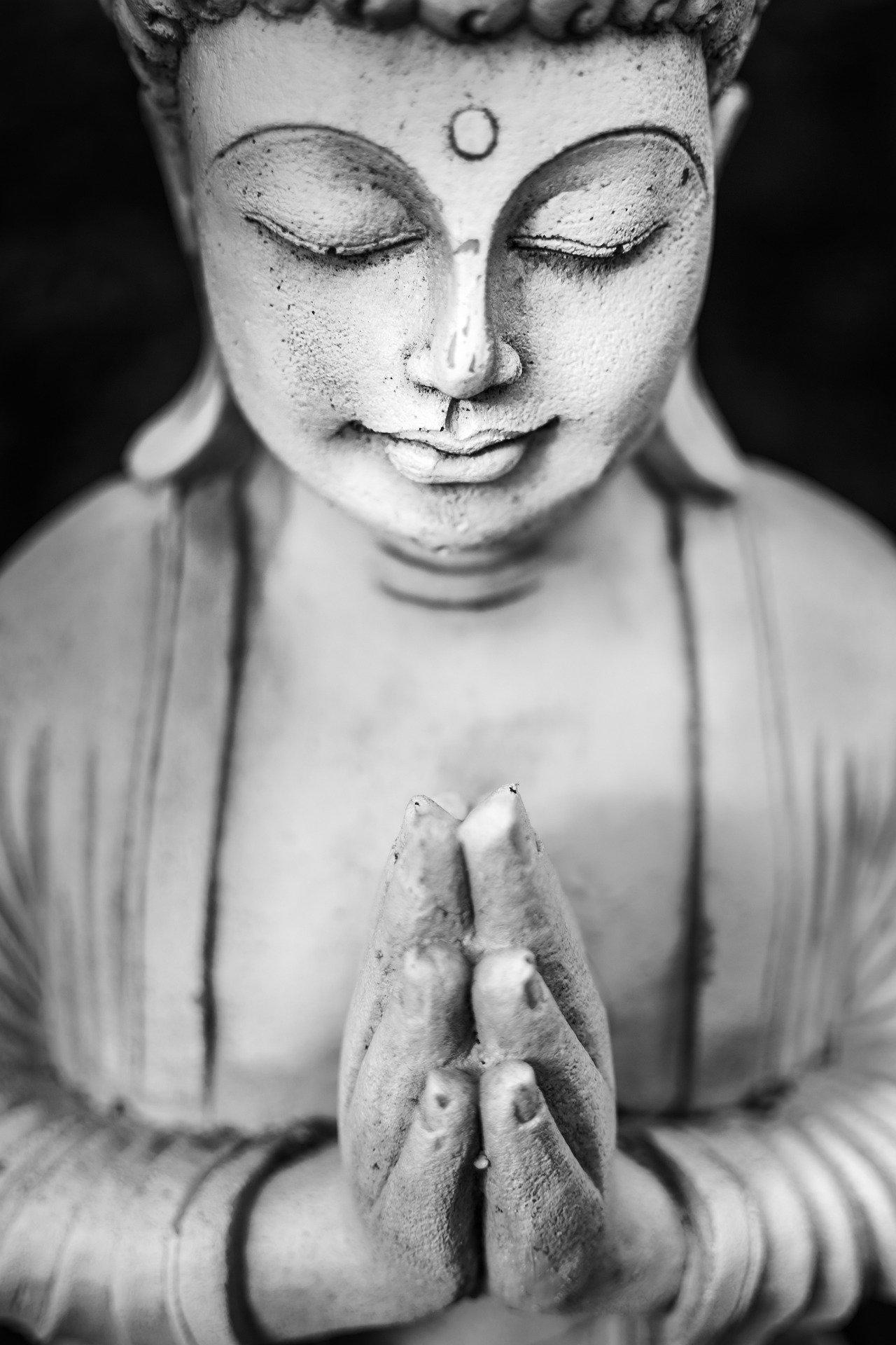 20 Boeddhistische quotes voor meer liefde en geluk in 2020