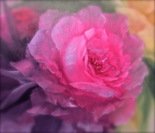 Roses - Iris Boonstra - Chantal Magazine